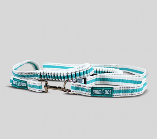Dog Leashes and Collars / Small or Large